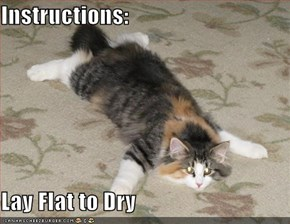 Instructions:  Lay Flat to Dry