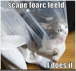 scape foarc feeld  I does it