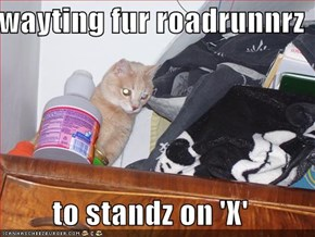 wayting fur roadrunnrz  to standz on 'X'