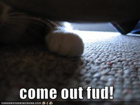 come out fud!
