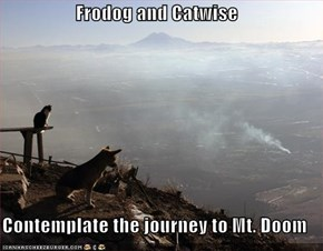 Frodog and Catwise  Contemplate the journey to Mt. Doom