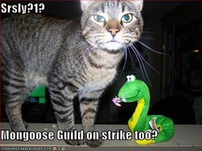Srsly?1?  Mongoose Guild on strike too?