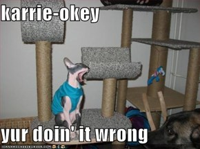 karrie-okey  yur doin' it wrong