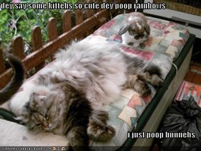dey say some kittehs so cute dey poop rainbows  i just poop bunnehs.