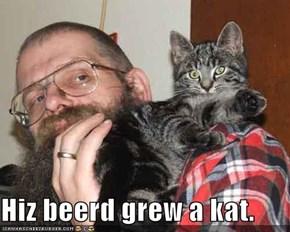Hiz beerd grew a kat.