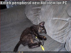 Kitteh peripheral new hot item for PC