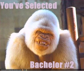 You've Selected                    Bachelor #2