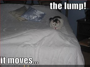 the lump!  it moves...