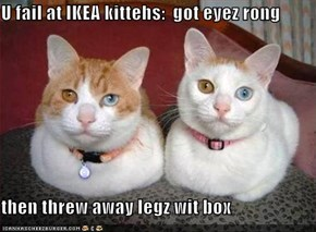 U fail at IKEA kittehs:  got eyez rong  then threw away legz wit box