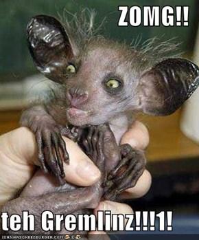 ZOMG!!  teh Gremlinz!!!1!