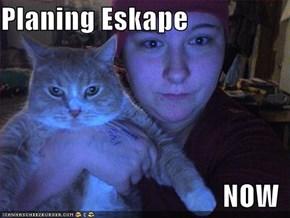 Planing Eskape  NOW
