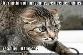Alternating oil massage, we decide against  greasing up the cat.