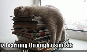 iz learning through osmosis