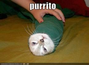 purrito