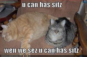 u can has sitz  wen we sez u can has sitz