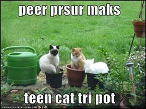 peer prsur maks  teen cat tri pot