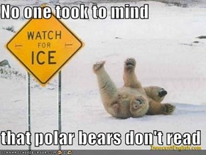 No one took to mind  that polar bears don't read