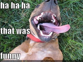 ha ha ha that was funny