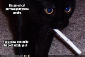 Basementcat purrswayedz you to smoke.