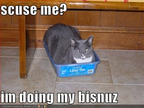 scuse me?  im doing my bisnuz
