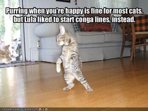 Purring when you're happy is fine for most cats,but Lula liked to start conga lines, instead.