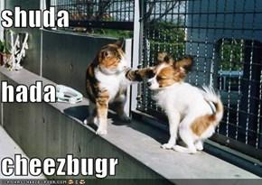 shuda hada cheezbugr