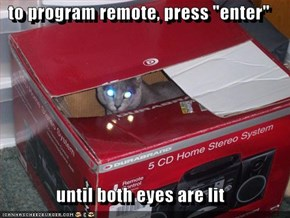 "to program remote, press ""enter""  until both eyes are lit"