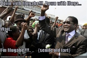 Down with Mugabe!!!  Down with Muga...  Wait.. I'm Mugabe !!!.. ..    {senile old fart}