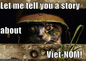 Let me tell you a story  about Viet-NOM!