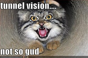 tunnel vision....  not so gud