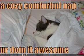 a cozy comfurbul nap  ur doin it awesome