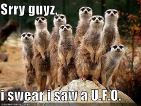 Srry guyz,  i swear i saw a U.F.O.