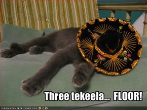 Three tekeela...  FLOOR!