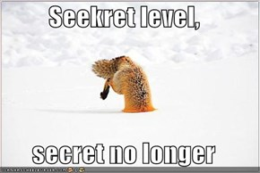 Seekret level,  secret no longer