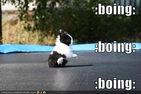 :boing: :boing: :boing: