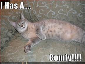 I Has A....  Comfy!!!!