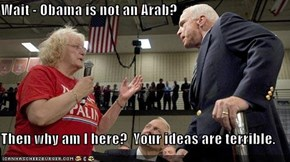 Wait - Obama is not an Arab?  Then why am I here?  Your ideas are terrible.