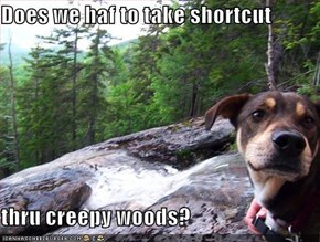 Does we haf to take shortcut  thru creepy woods?