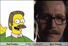 Ned Flanders TotallyLooksLike.com Gary Oldman