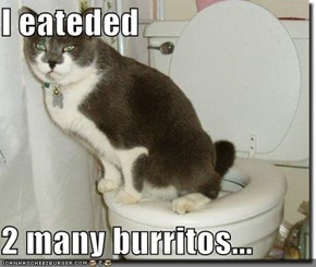 I eateded   2 many burritos...