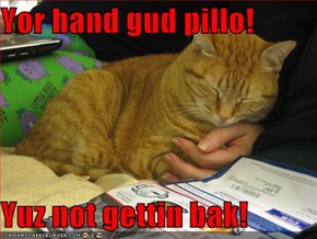Yor hand gud pillo!  Yuz not gettin bak!