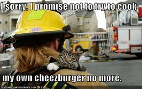I sorry, I promise not to try to cook   my own cheezburger no more.