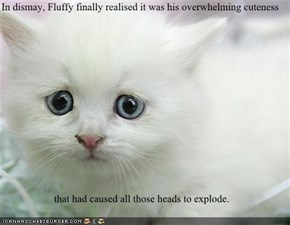 In dismay, Fluffy finally realised it was his overwhelming cuteness  that had caused all those heads to explode.