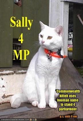 *Commonwealth kitteh uses hooman name to stand 4 parliarment