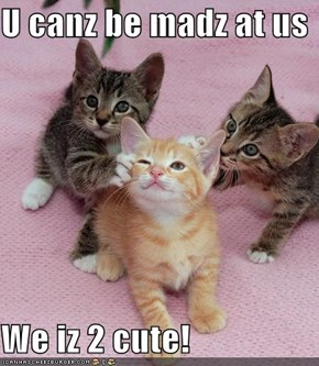 U canz be madz at us  We iz 2 cute!