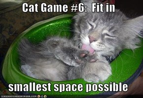 Cat Game #6:  Fit in  smallest space possible