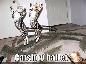 Catshoy ballet