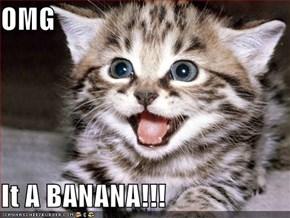 OMG  It A BANANA!!!