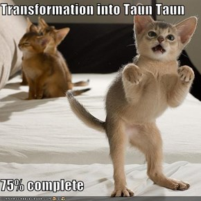 Transformation into Taun Taun  75% complete