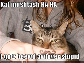 Kat mushtash HA HA  I gotz beewd awlover stupid